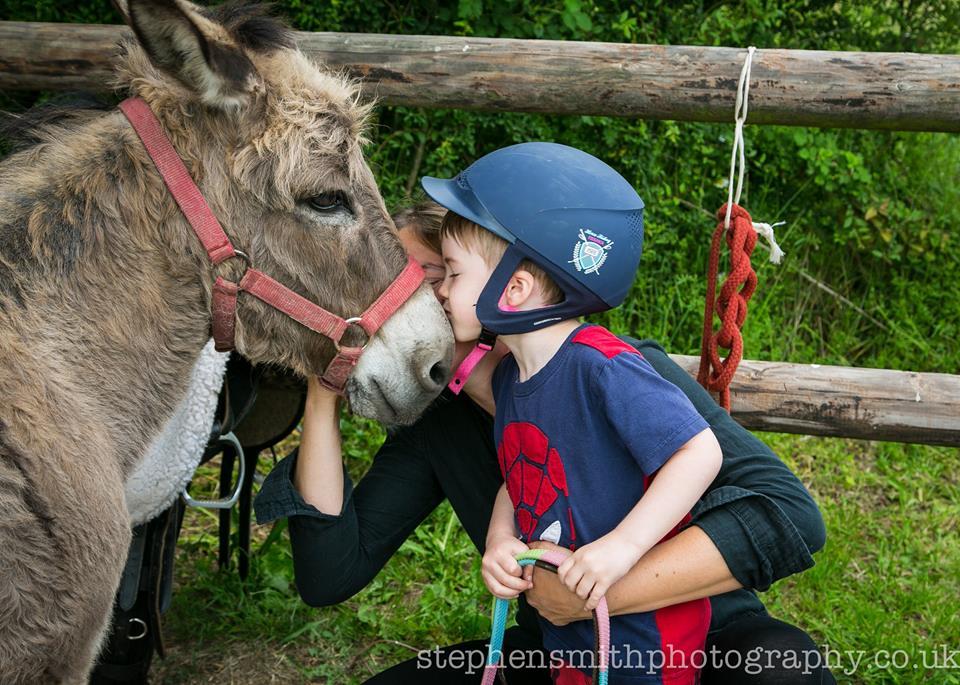 actualités équitation chez seraphin baby âne